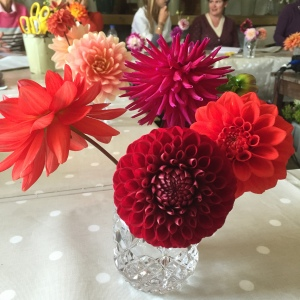 Bright and beautiful dahlias at Green and Gorgeous